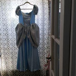 Costume Cinderella Dress
